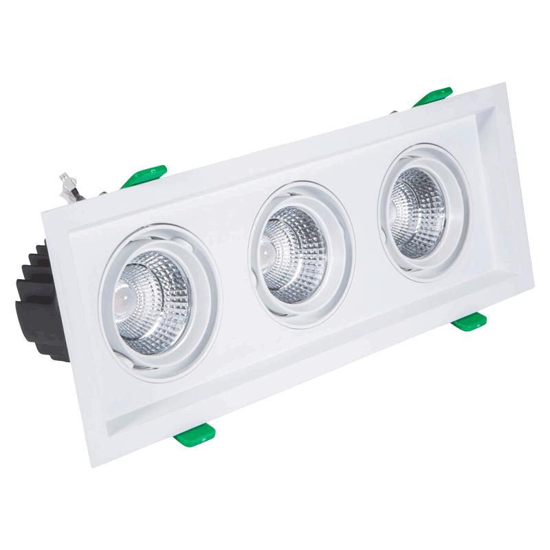 Gimbal LED Downlight - Protium